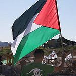 Palestijns protest - (c) Martijn Dekker
